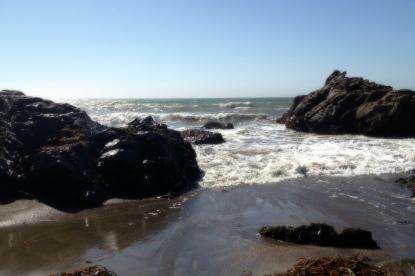 The Wild California Coast
